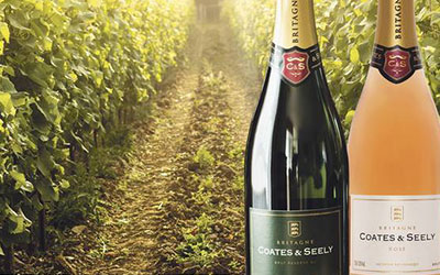 ENGLISH-BUBBLY--THE-U.K'S-SPLASH-INTO-THE-SPARKLING-WINE-MARKET