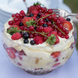Food pairing Champagne with Summer Berries